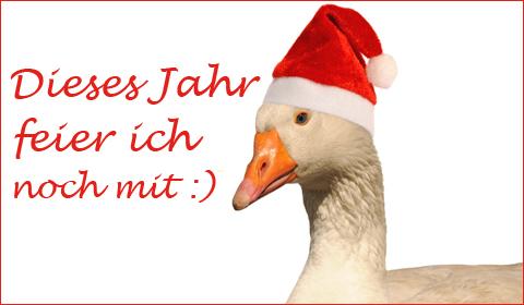 Witzige Weihnachtssprüche Für Karten.Lustige Weihnachtsgrüße Versenden