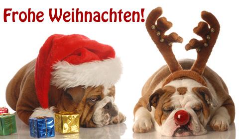 Wann Weihnachtskarten Versenden.Lustige Weihnachtskarten Versenden